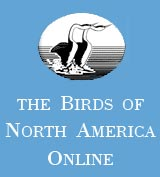 Birds of North America Online